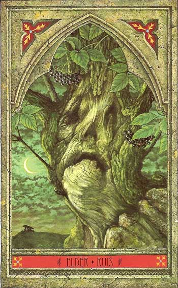 The Green Man Tree Oracle by John Matthews and Will Worthington