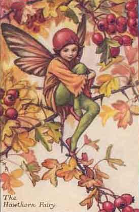 Hawthorn Fairy by Cicely Mary Barker
